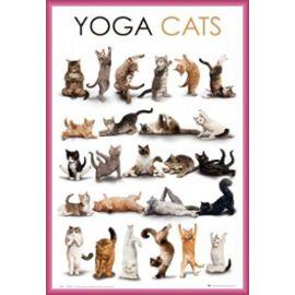 poster-encadre-chats-yoga-etirement-du-chat-91x61-cm-cadre-plastique-pink-affiches-887984687_ML